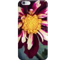 Flower 18 iPhone Case/Skin