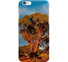 Early Morning Forest, Kalgoorlie WA Australia iPhone Case/Skin