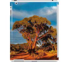 Early Morning Forest, Kalgoorlie WA Australia iPad Case/Skin