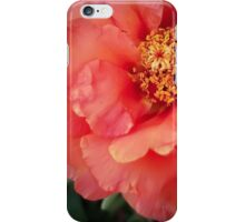 Flower 19 iPhone Case/Skin