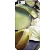 Resting Water Lily iPhone Case/Skin