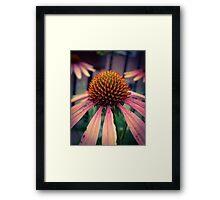 Flower 20 Framed Print