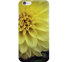 Flower 21 iPhone Case/Skin