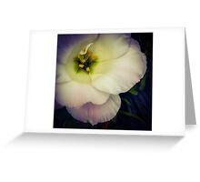 Flower 24 Greeting Card