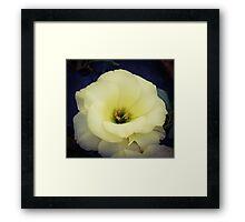 Flower 25 Framed Print