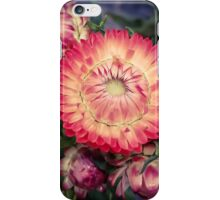 Flower 26 iPhone Case/Skin