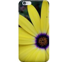Flower 29 iPhone Case/Skin
