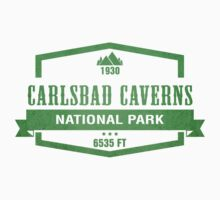 Carlsbad Caverns National Park, New Mexico by CarbonClothing