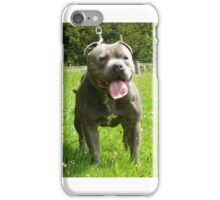Dog (Staffordshire bull terrier) iPhone Case/Skin