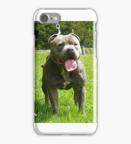 Dog (Staffordshire bull terrier) iPhone Case/Skin
