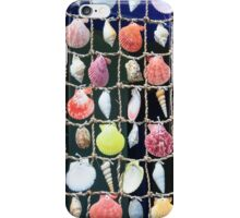 Colorful shells background iPhone Case/Skin