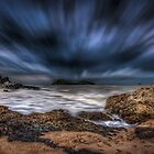 Palm Cove by mellosphoto