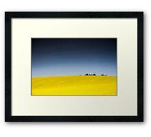 Fields of gold under blue skies Framed Print