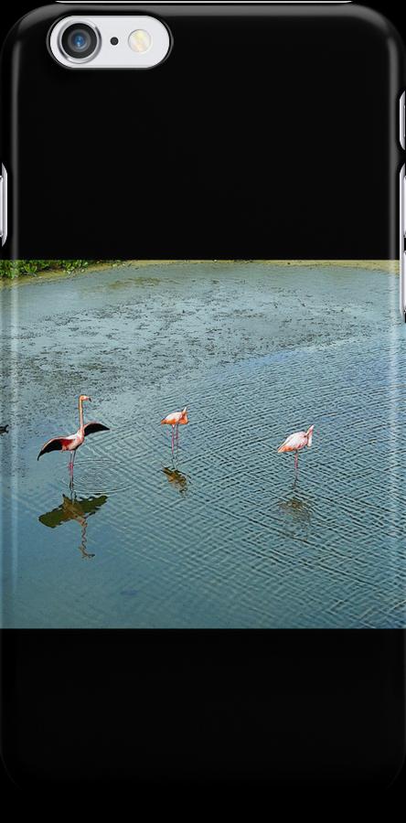 Galapagos Flamingoes Artwork by Al Bourassa