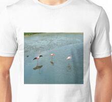 Galapagos Flamingoes Artwork Unisex T-Shirt