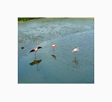 Galapagos Flamingoes Artwork Unisex T-Shirt