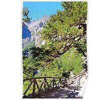 Samariá Gorge, island of Crete, Greece Poster