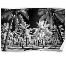 Surreal tropics  Poster