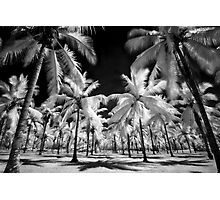 Surreal tropics  Photographic Print