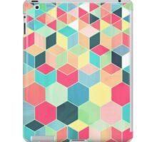 Yummy Summer Colour Honeycomb Pattern iPad Case/Skin
