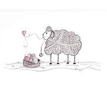 Tangled Spinning Ewe Photographic Print