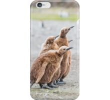 Posers iPhone Case/Skin