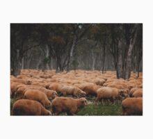 Droving Sheep at Albert  © Vicki Ferrari Kids Tee