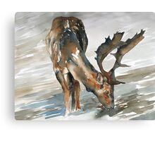 deer#2 Canvas Print