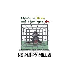 Puppy Mills by ANIMAL WELFARE  CARTOONS NRT