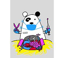 Panda MD Photographic Print