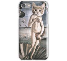 Primavera Cats iPhone Case/Skin