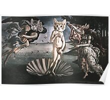Primavera Cats Poster