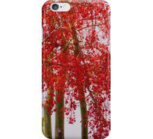 Lanzarote iPhone Case/Skin