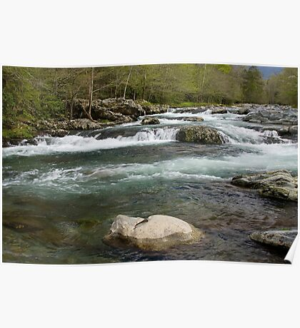 Middle Prong Little Pigeon River Poster