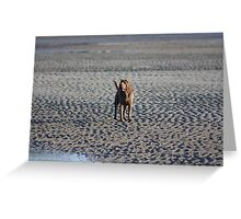 Issy beach Belle Greeting Card