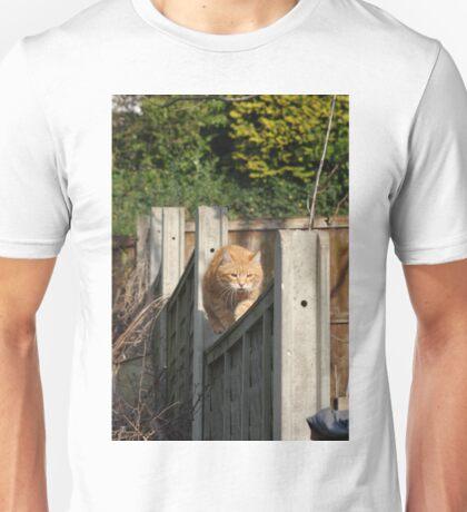 Ginger cat on garden fence Unisex T-Shirt
