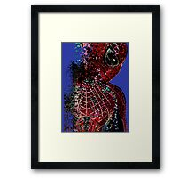 Vanished Spider Framed Print