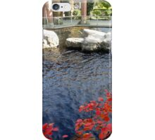 Red Pond iPhone Case/Skin