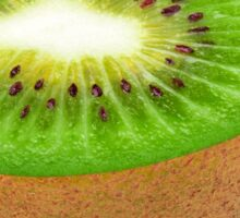 Half of kiwi fruit Sticker