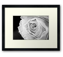 Macro of Yellow Rose Framed Print