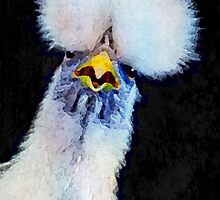 Fancy Chickens:  Who Got First Place?!  That Hussy! by Bunny Clarke
