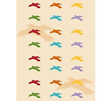 Pattern 006 Colorful Bird Shapes Photographic Print