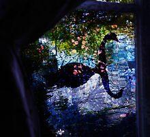 Blue swan by elara