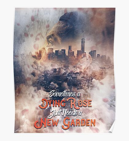 Derrick Rose Chicago to New York Garden Artwork Basketball Poster