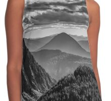 Viewpoint Contrast Tank