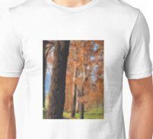 Autumn © Vicki Ferrari Unisex T-Shirt