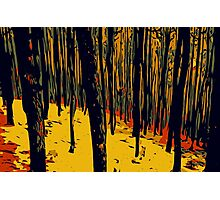 Red Forest Photographic Print