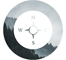 Forest Compass Photographic Print
