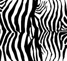 Animal Print, Zebra Stripes - Black White  by sitnica