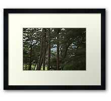 A View from Ilkley Moor Framed Print